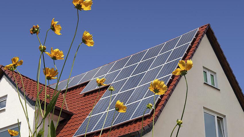 Groene leges, bouwen aan duurzaamheid